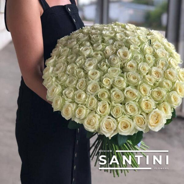 Букет из 101 белой розы Avalanche 70 см