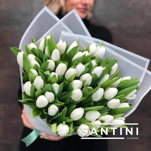 Букет из 51 белого тюльпана «White Dynasty»