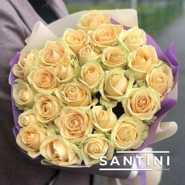 Букет из 25 кремовых роз Talea