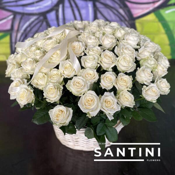 Корзина из 101 белой розы Avalanche