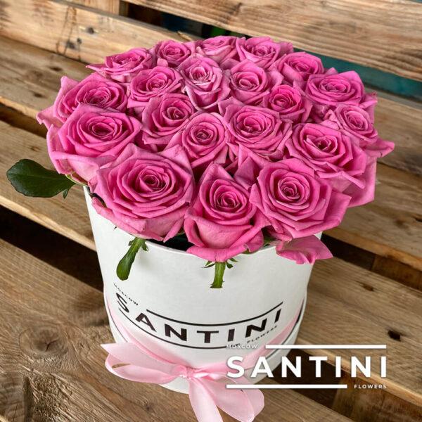 Коробка розовых роз Aqua