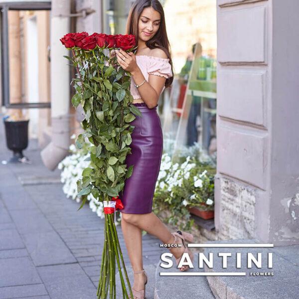 Высокие розы - 150 см