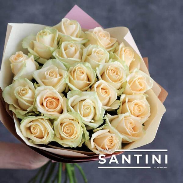 Букет из 19 кремовых роз Talea
