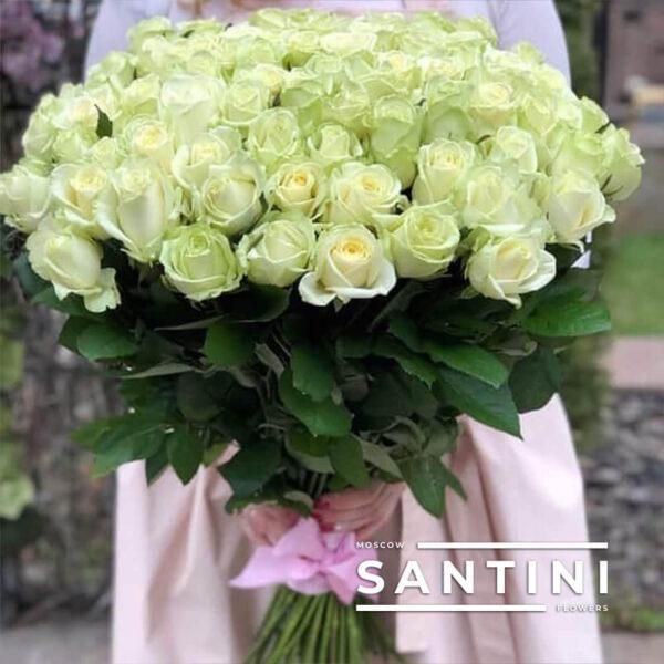 51 белая роза Avalanche 70 см