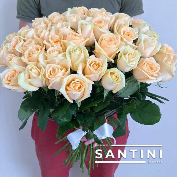 51 роза Talea 50 см