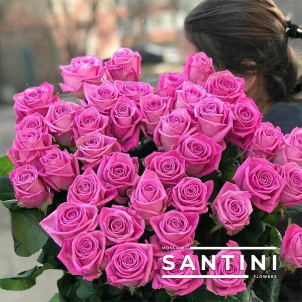 51 роза Aqua 50 см