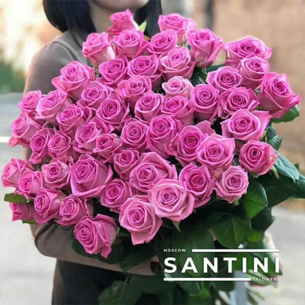 51 роза Aqua 60 см