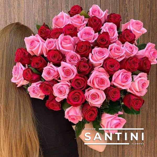 51 красно-розовая роза 50 см