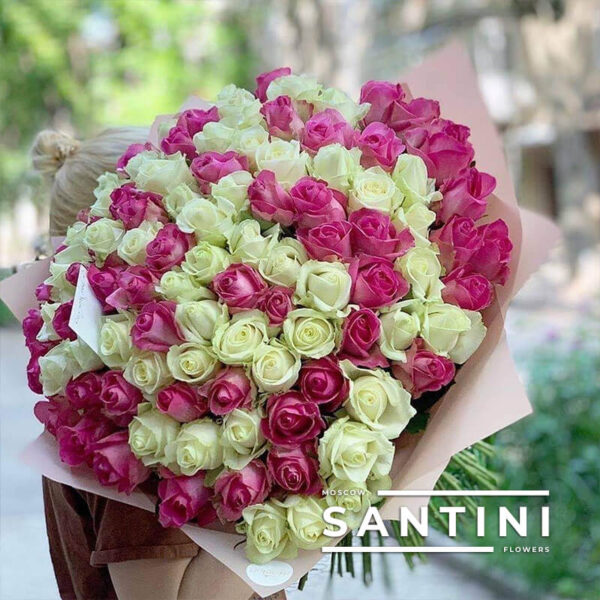 101 бело-розовая роза 50 см