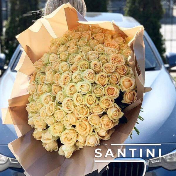 101 кремовая роза Talea 50 см