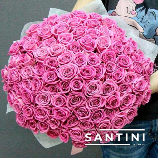 101 розовая роза Aqua 50 см