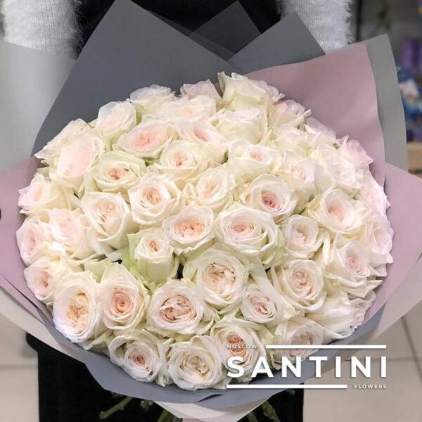 51 роза White O'Hara 50 см