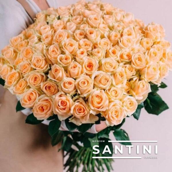 101 кремовая роза Talea 70 см