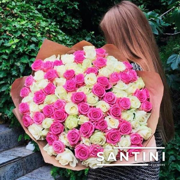 101 бело-розовая роза 70 см