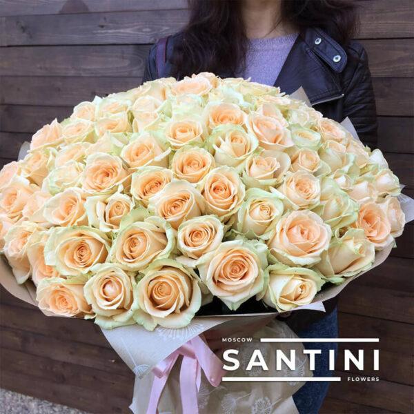 101 кремовая роза Talea 80 см