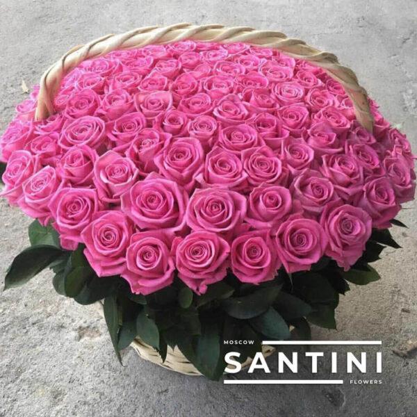 101 розовая роза в корзине Aqua