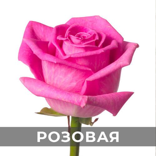 dostavka-cvetov-296