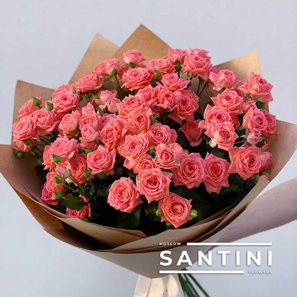Кустовые розы Coral Blik