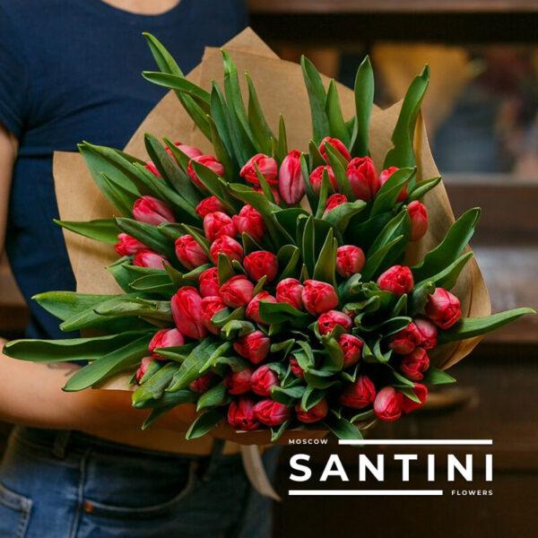 51 красный тюльпан «Red Fresh»