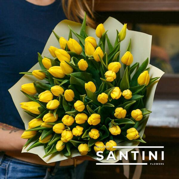 51 желтый тюльпан «Уellow-Сharm»