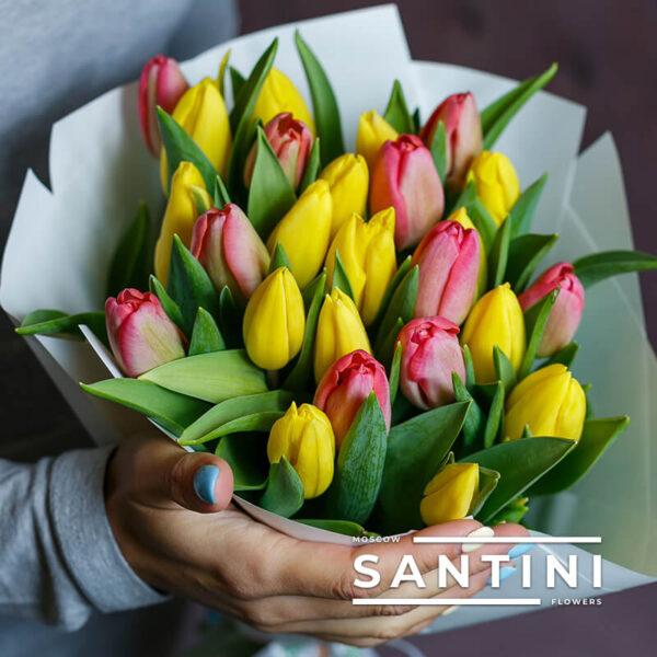 Букет из 25 желто-розовых тюльпанов «Monica»