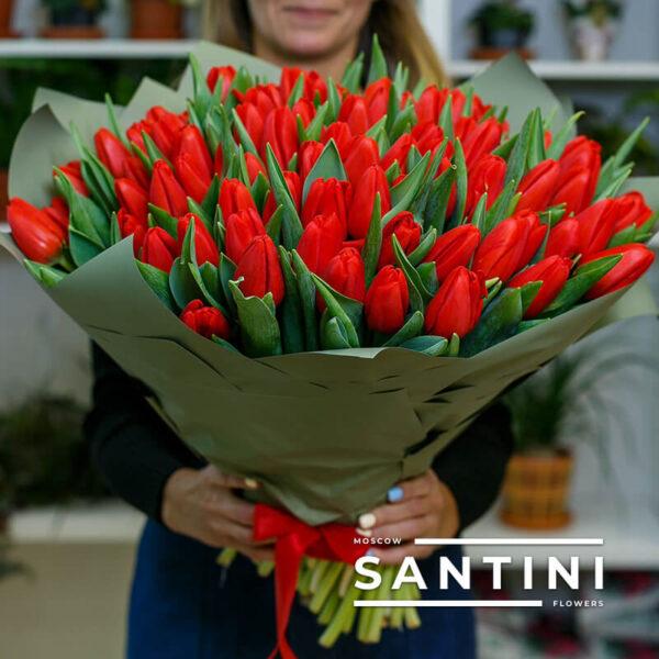 101 красный тюльпан «Red Fresh»