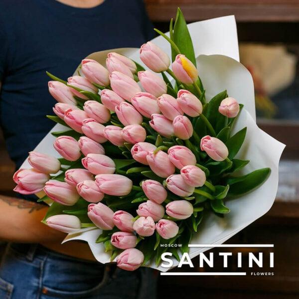 "<span style=""color: #ff0000;"">ХИТ</span> - 51 розовый тюльпан «Pink-Dynasty»"