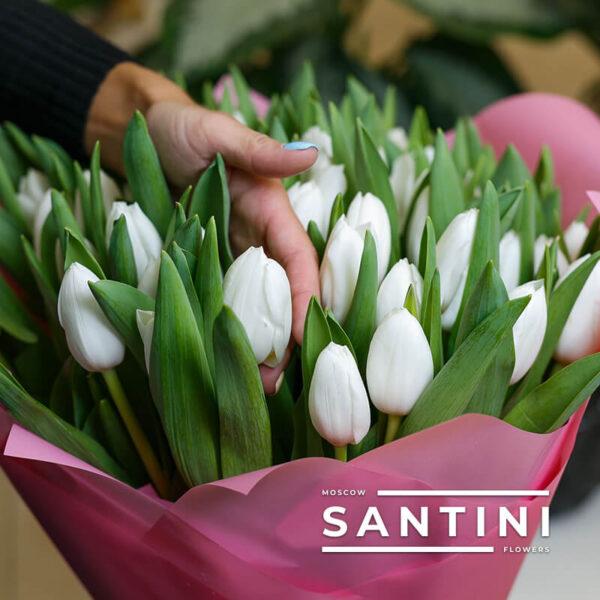 Букет из 51 белого тюльпана «White Prince»