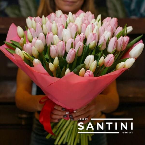 "<span style=""color: #ff0000;"">ХИТ</span> - 101 розовый тюльпан «Pink-Dynasty»"