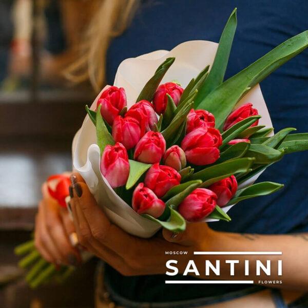 Букет из 15 красных тюльпанов «Red Fresh»