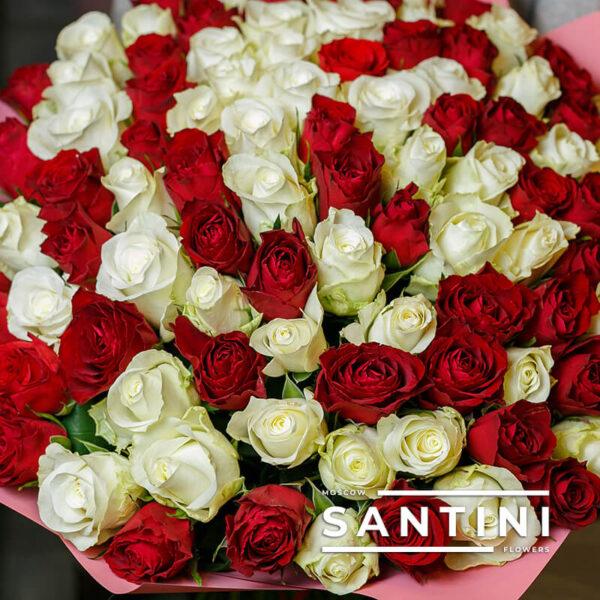 101 красно-белая кенийская роза MIX