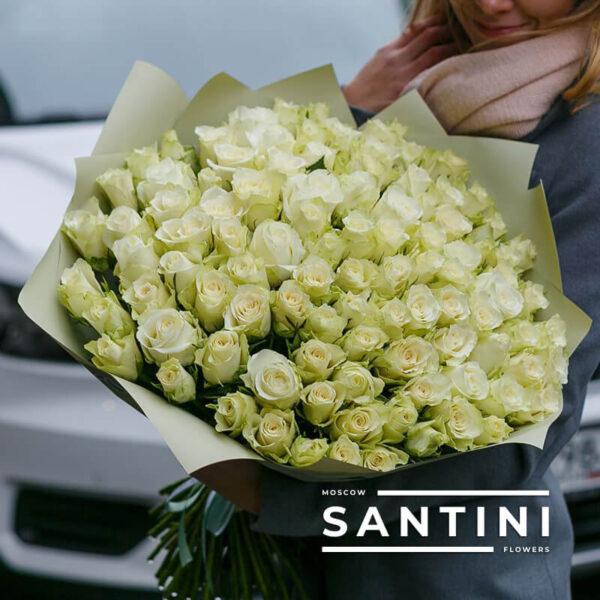 101 белая кенийская роза White