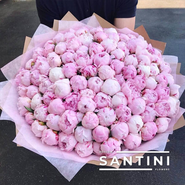 Букет из 101 розового пиона