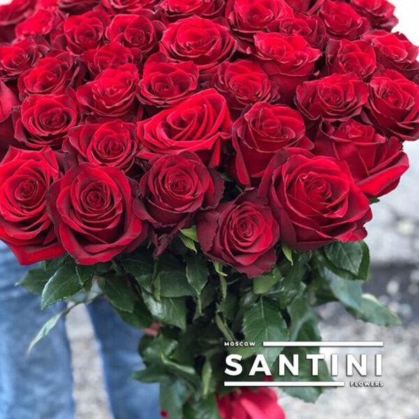 Букет из 51 высокой розы - метровые розы