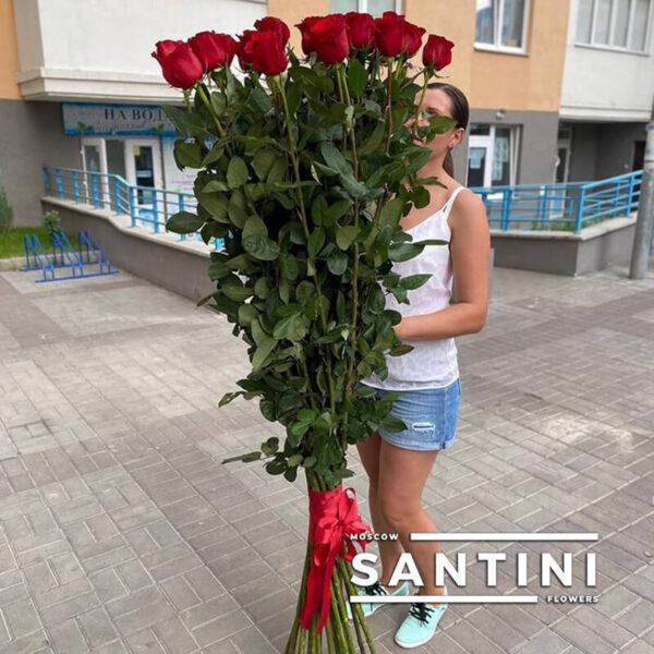 Высокие розы - 190 см