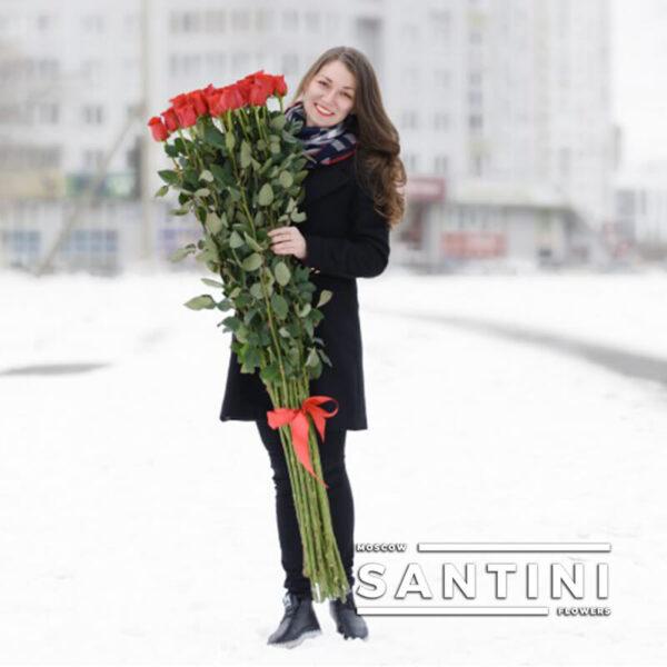 Высокие розы - 160 см