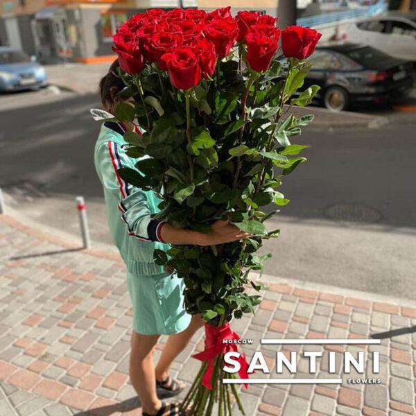 Высокие розы - 180 см