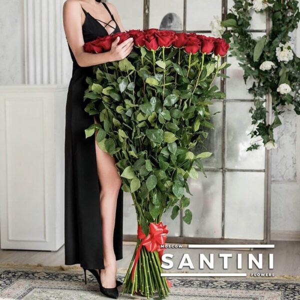 Высокие розы - 120 см