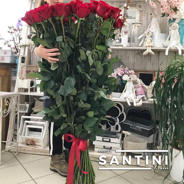 Высокие розы - 130 см