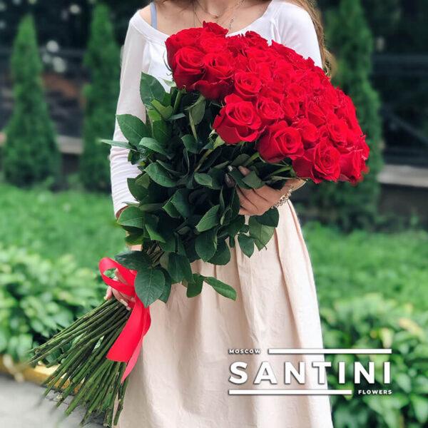 Высокие розы - 90 см